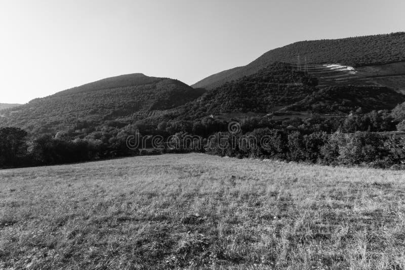 Seelandschaft, Schwarzweiss stockbilder