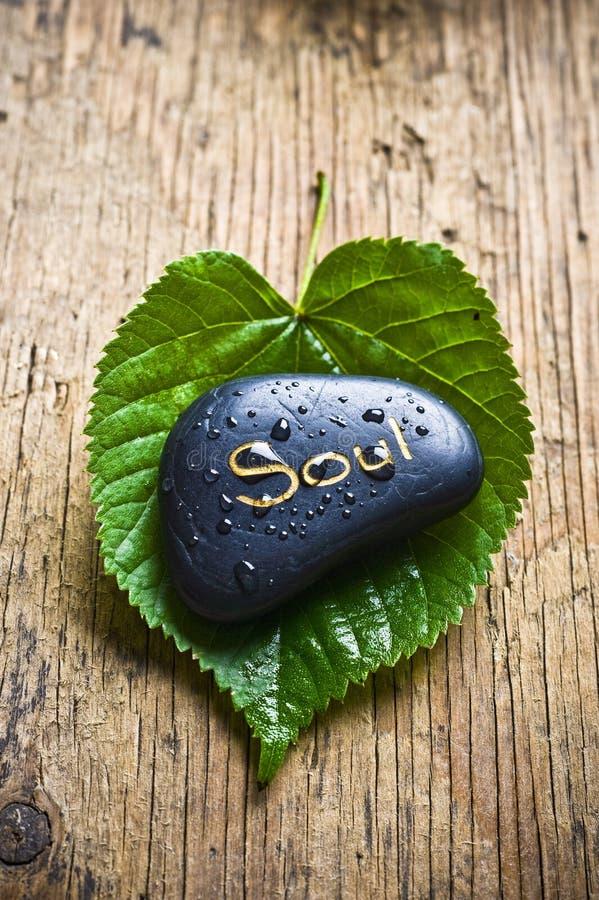 Seele und heilende Natur lizenzfreie stockfotos
