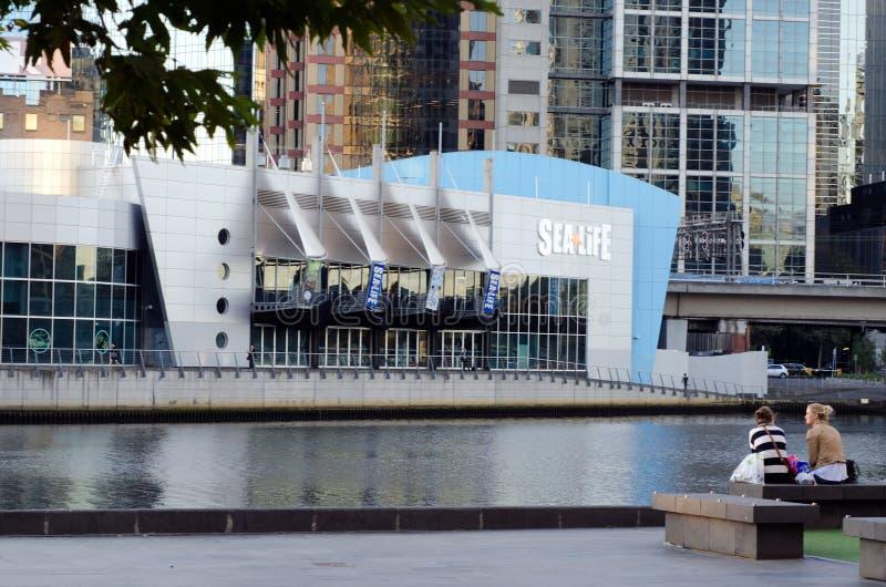 SEEleben Melbourne-Aquarium lizenzfreie stockfotos