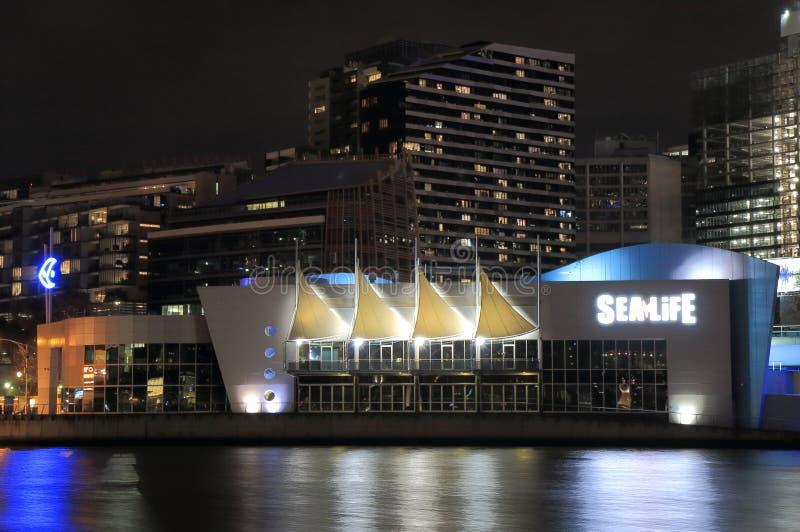 SEEleben Melbourne-Aquarium lizenzfreie stockfotografie