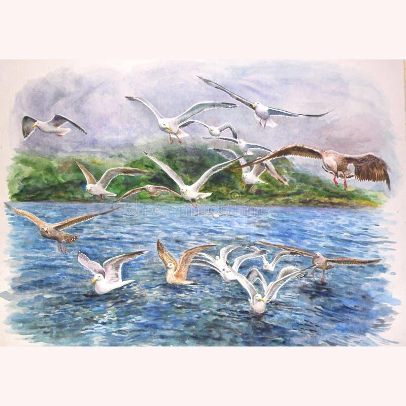 Seemöwen, die über das Meer fliegen lizenzfreie abbildung
