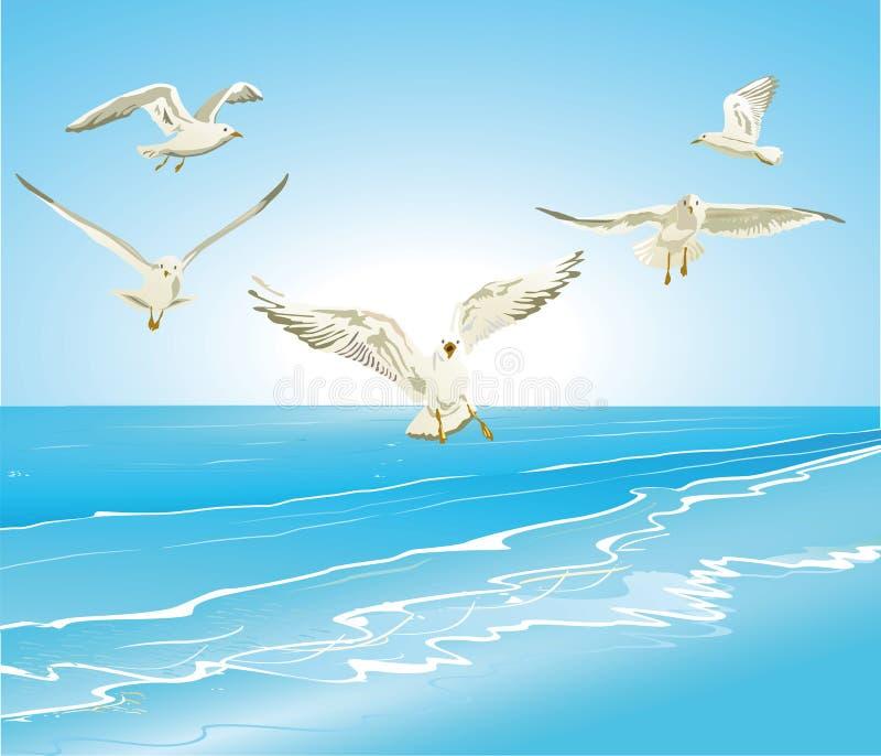 Seemöwen, die über Meer fliegen lizenzfreie abbildung