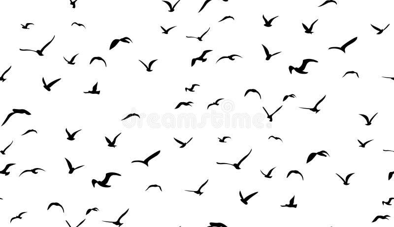 Seemöwen, die in den Himmel, nahtloses Vektormuster fliegen lizenzfreie abbildung