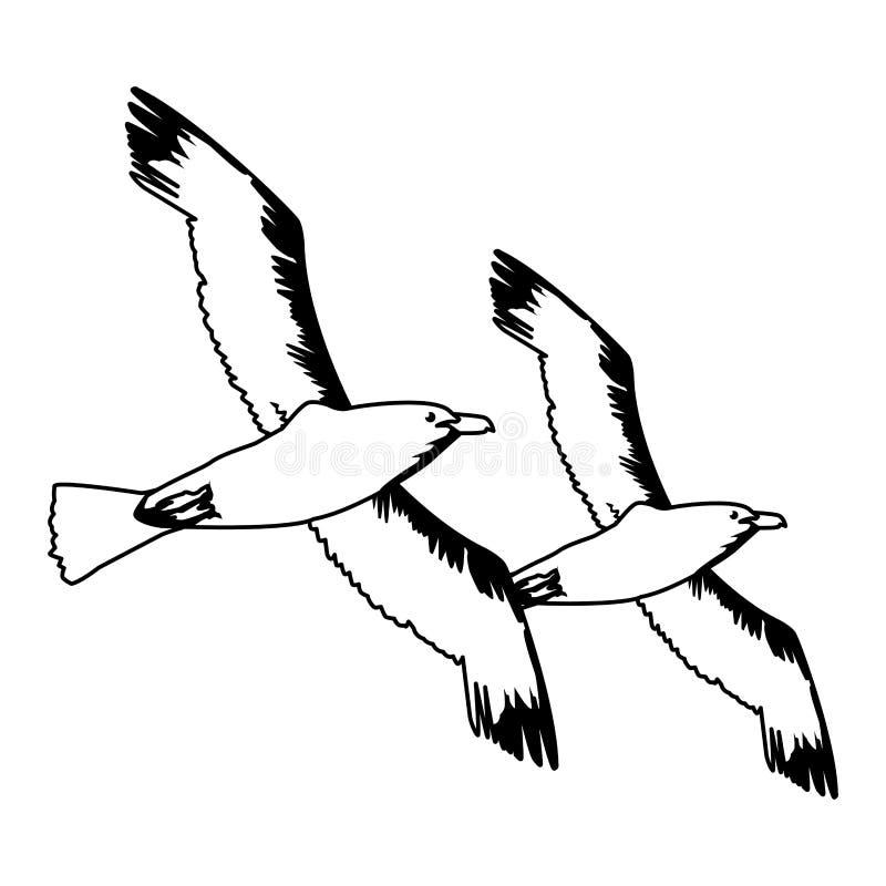 Seemöwenvögel, die Karikatur in Schwarzweiss fliegen lizenzfreie abbildung