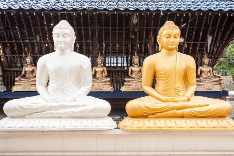 Seema Malaka Gangaramaya寺庙 免版税库存照片
