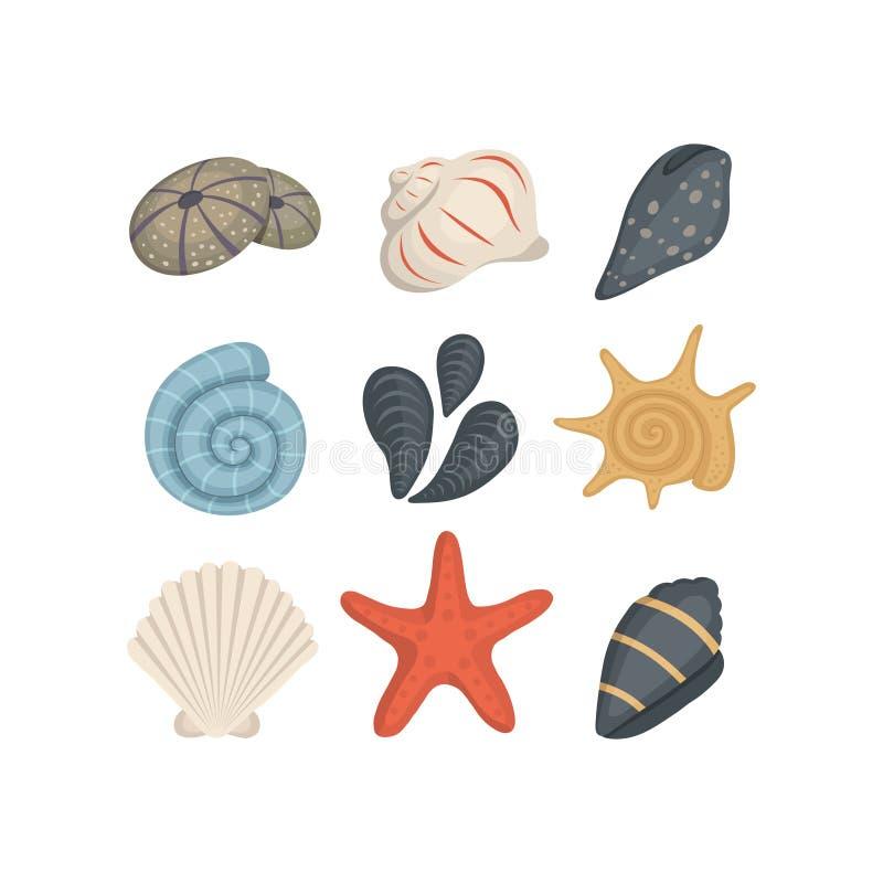 Seeoberteil-Vektorikonen in der Karikaturart Stellen Sie von der Muschelmolluske ein Ozean Cockleshell vektor abbildung