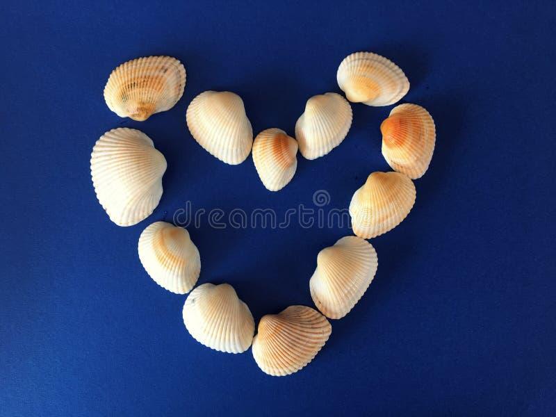 Seeoberteile, die ein Herz bilden stockfoto