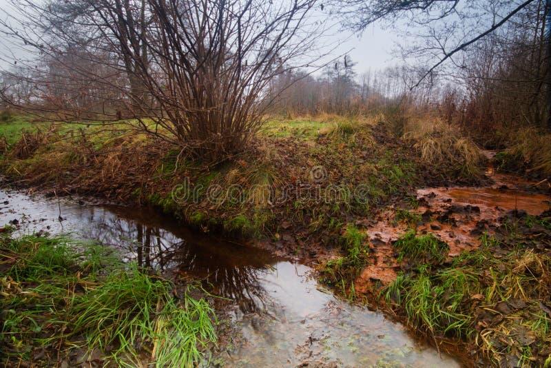 Seepage żelazna bogata wody gruntowe fotografia stock