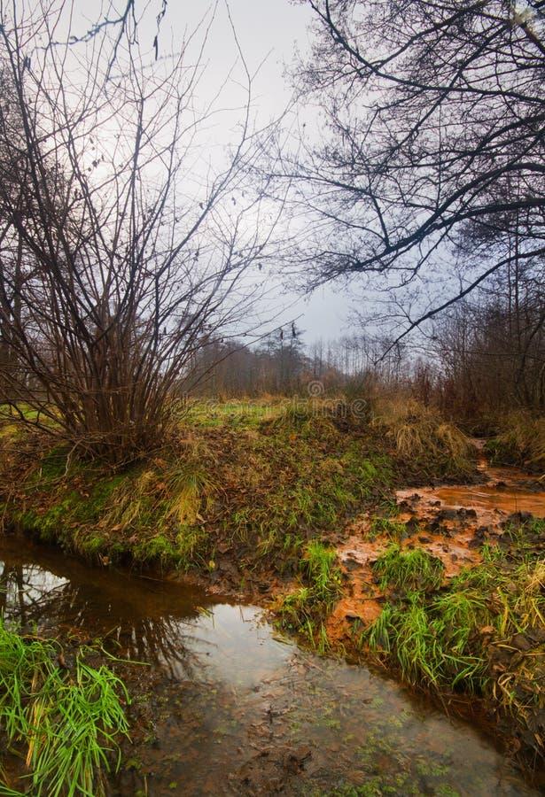 Seepage żelazna bogata wody gruntowe obraz stock