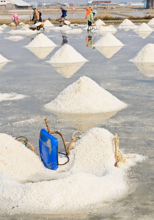 Seesalzstapel in Thailand lizenzfreie stockbilder