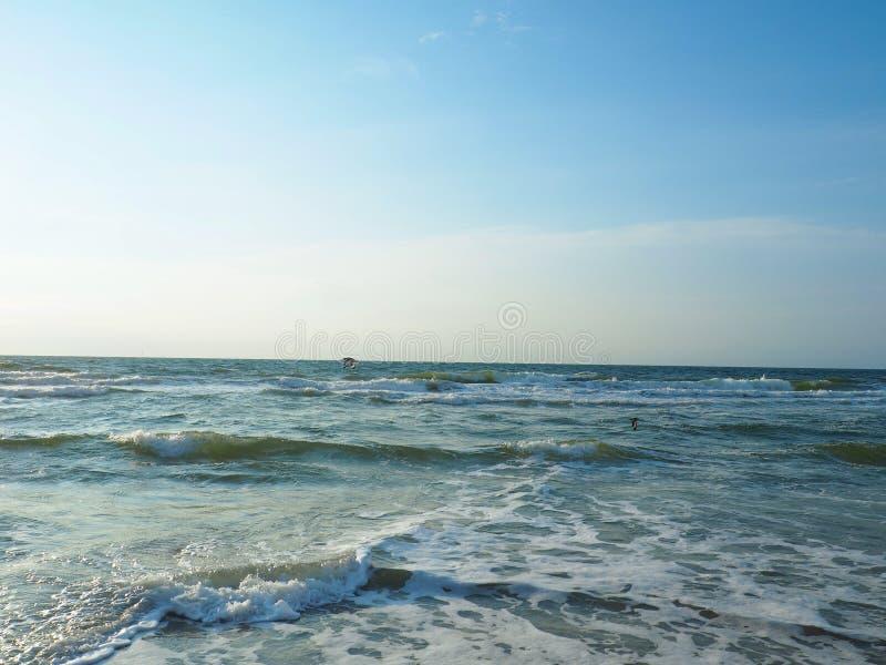 Seeschwalben-Fliegen über der atlantischen Küstenlinie bei Carolina Beach stockfotos