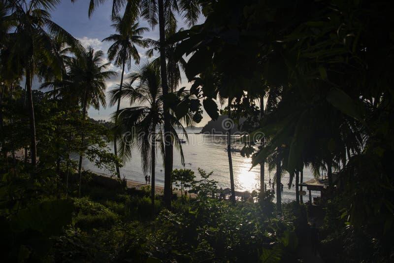 Seestrandansicht durch Palmen Sonnenuntergangansicht über tropischen Strand mit dunklen Schattenbildern von CocoPalmen stockfoto