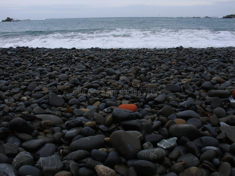 Seeufer stockfotografie