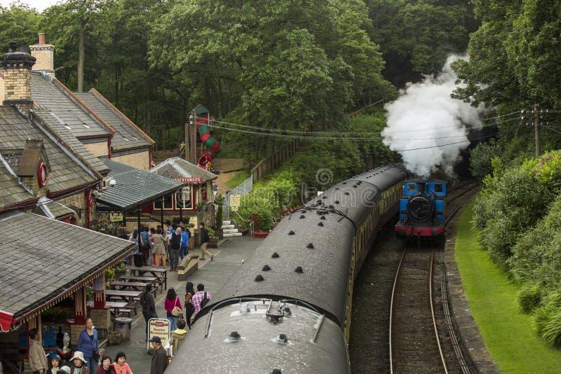 Seeufer und Haverthwaite-Eisenbahn stockfotografie