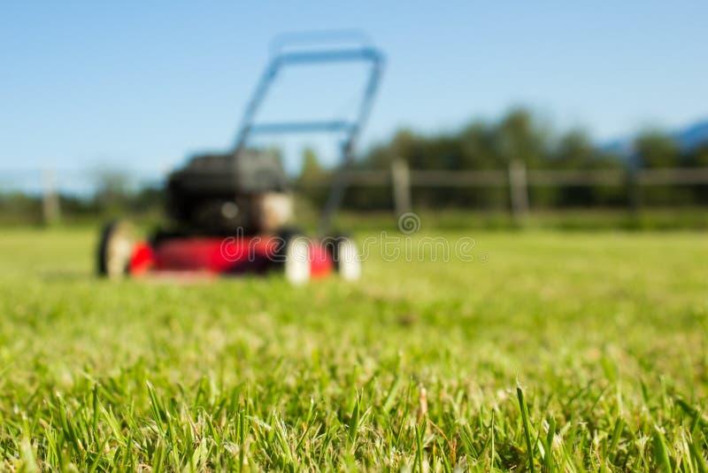 Segadeira de gramado na grama fotografia de stock royalty free