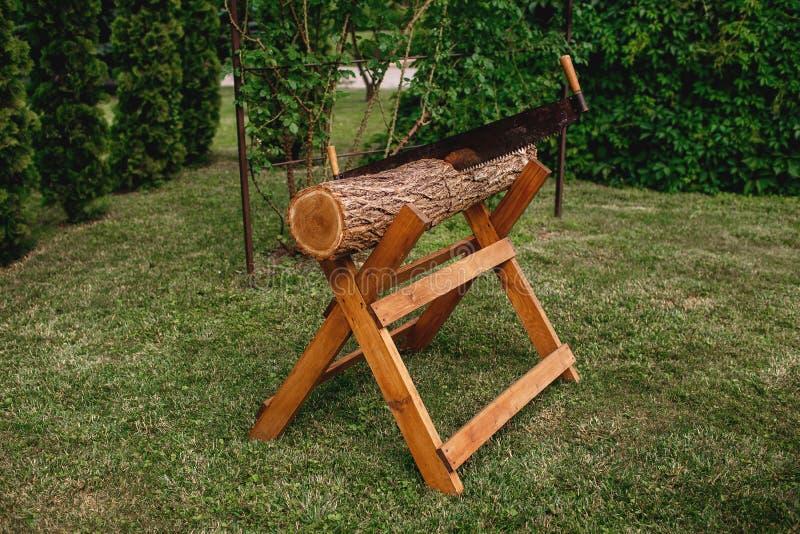 Segando collega un supporto di legno su un prato inglese verde, la sega di mano, amicizia fotografie stock libere da diritti