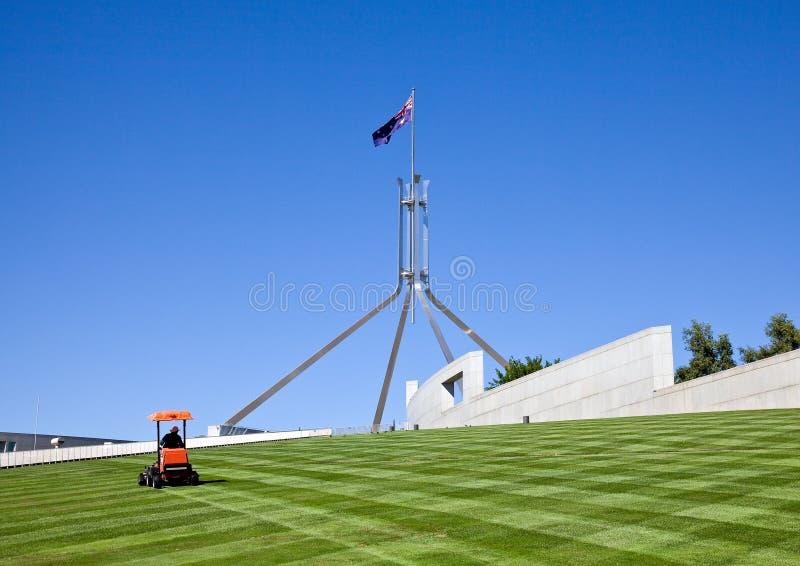 Segando o gramado que cobre o telhado do parlamento fotografia de stock royalty free