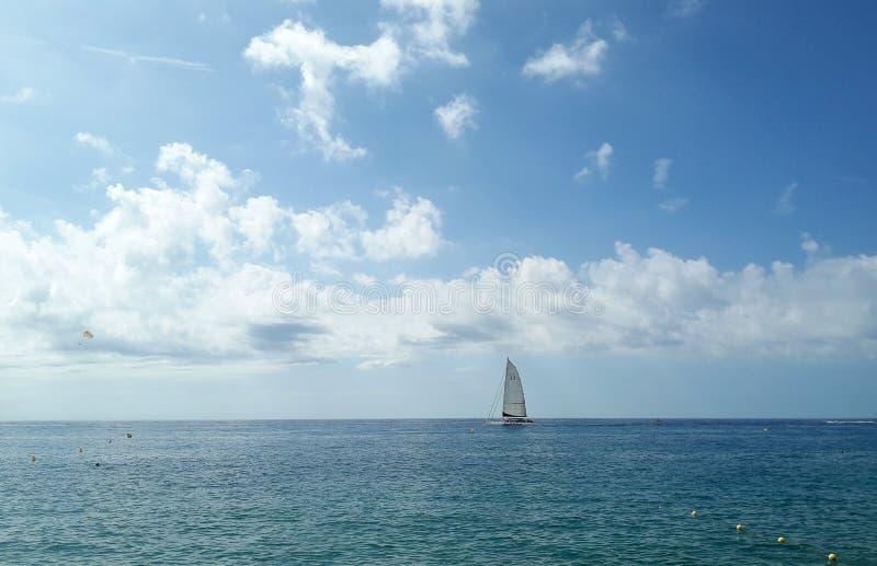 Segel i havet royaltyfria bilder