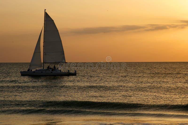 Segel im Sonnenuntergang stockbild