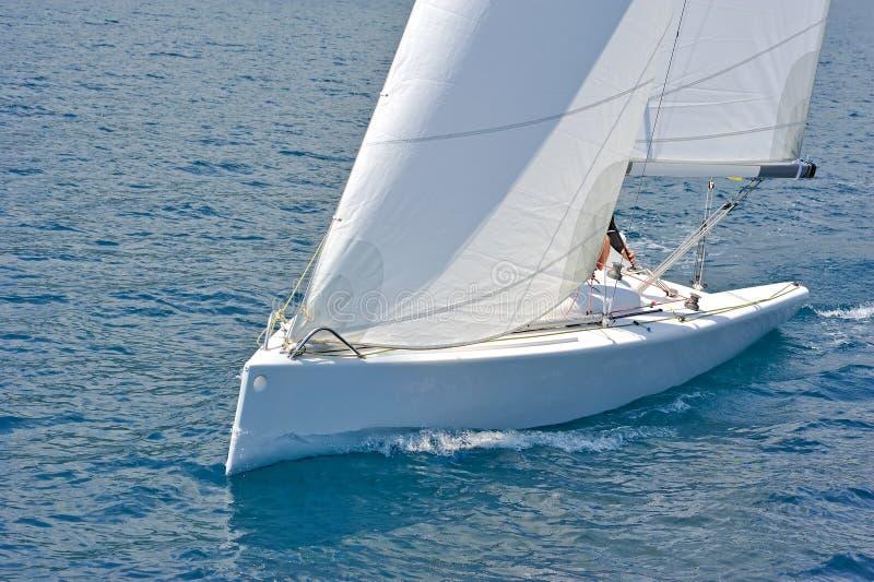Segelbåt i handling royaltyfri foto