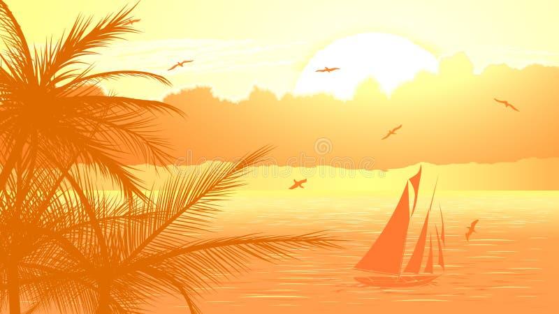 Segelbåt mot gul solnedgång.