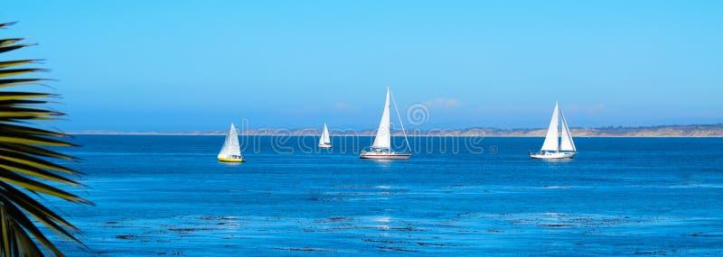 Segelbåtar i den Monterey fjärden royaltyfria bilder