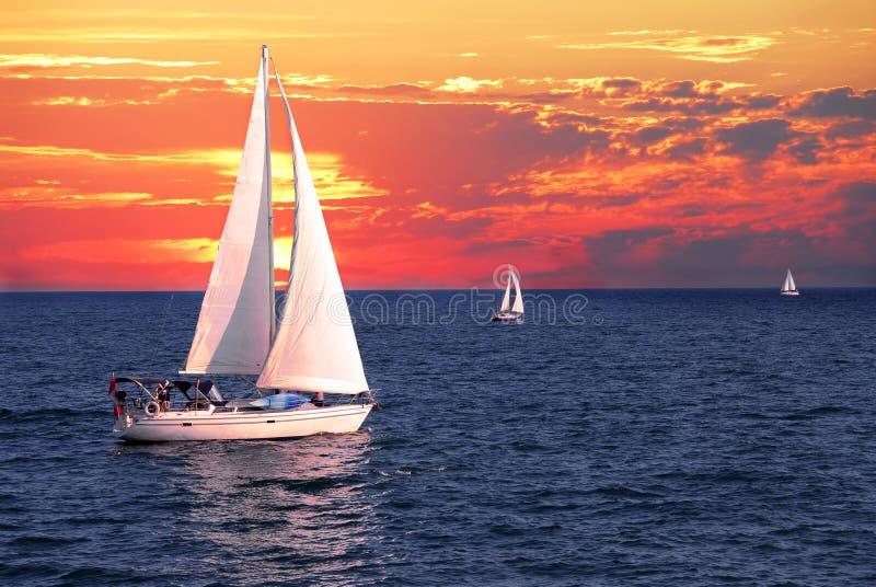 segelbåtsolnedgång royaltyfri fotografi