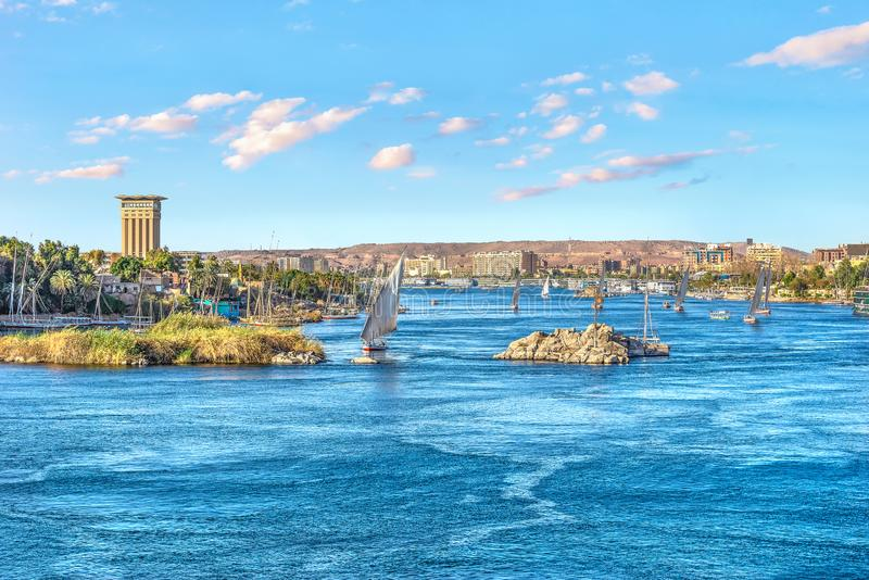 Segelb?tar i Aswan royaltyfri bild