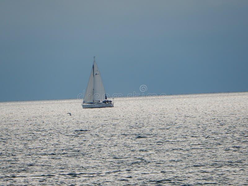 Segelboot lizenzfreie stockbilder
