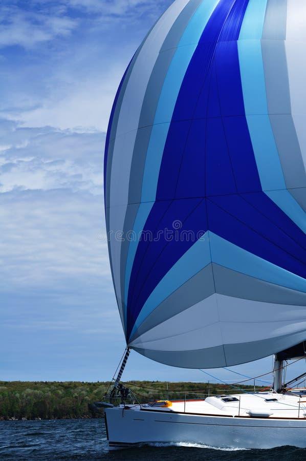 Segelboot mit blauem Spinnaker-Segel lizenzfreies stockbild