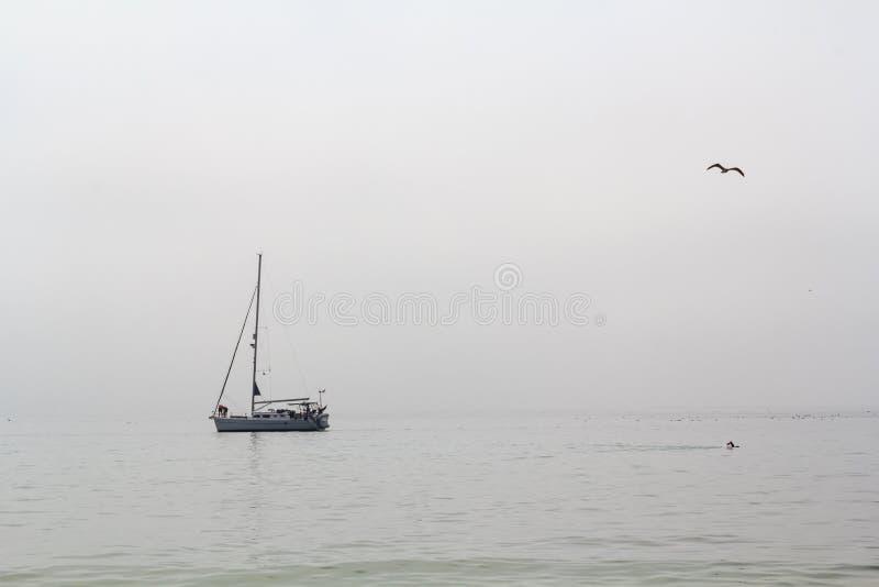 Segelboot und Schwimmer im Meer am nebelhaften Tag stockbild