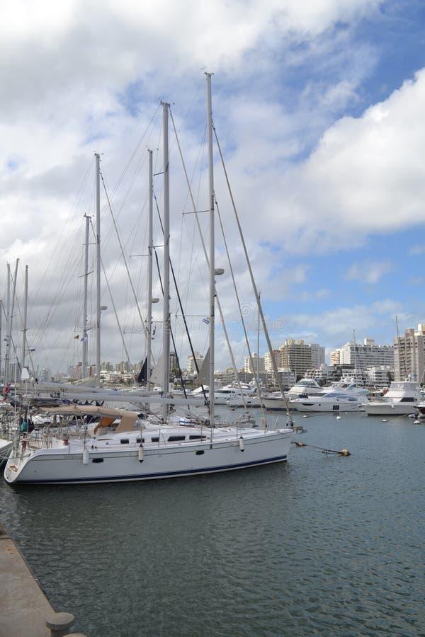 Segelboote im Hafen Punta del Este Uruguay stockfoto