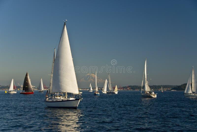 Segelboote am Puget Sound lizenzfreies stockfoto