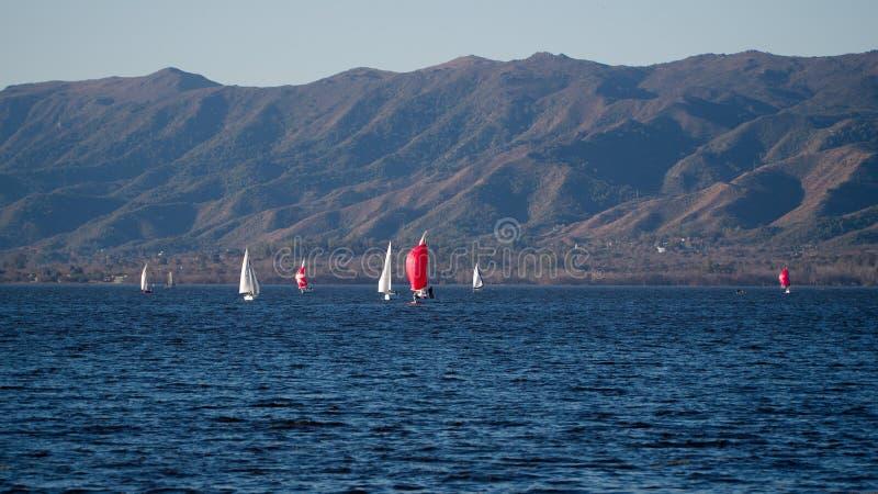 Segelboote in San Roque Lake stockbild