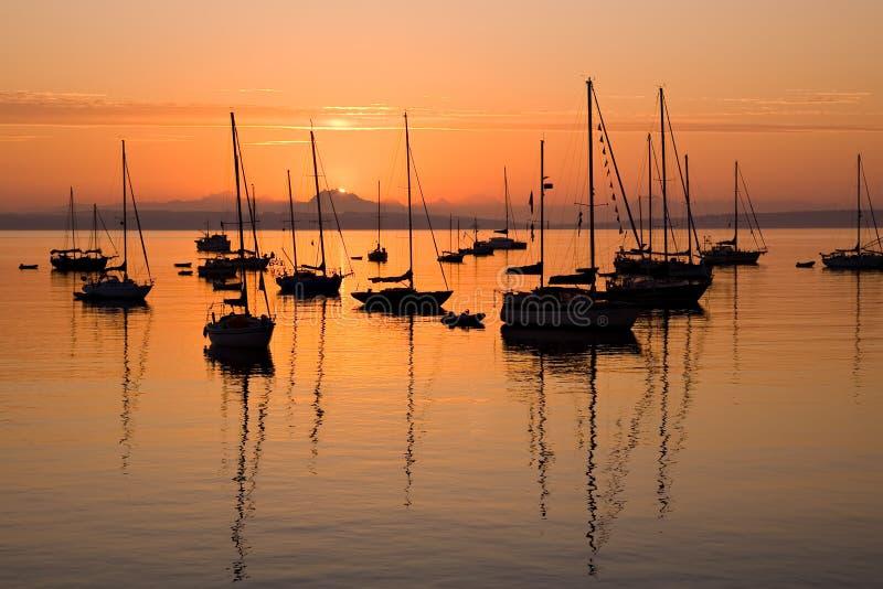 Segelboote am Sonnenaufgang im PortTownsend Schacht stockbilder
