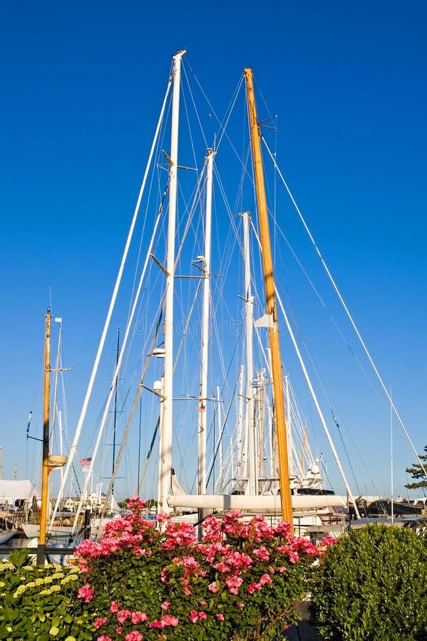 Segelbootmaste und -blumen stockfoto