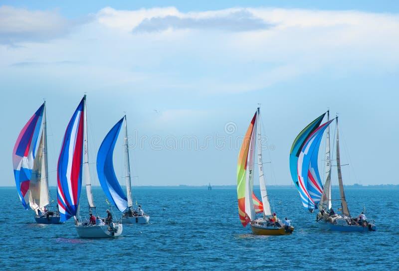 Segelbootrennen mit bunten Segeln lizenzfreies stockfoto