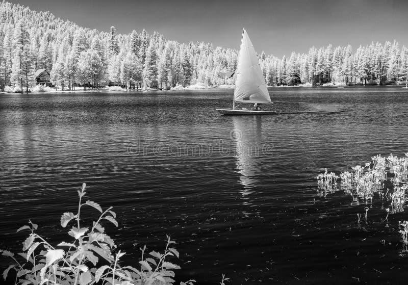 Segeln auf Serene Lakes, Infrarot lizenzfreie stockfotografie