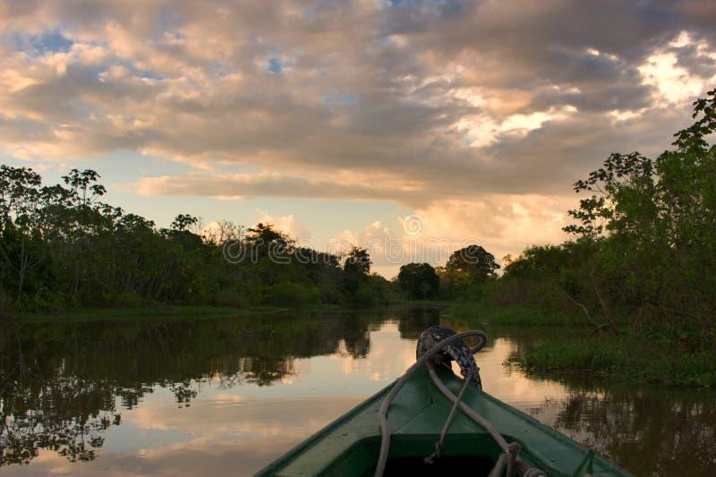 Segeln in den Amazonas bei Sonnenuntergang stockbilder