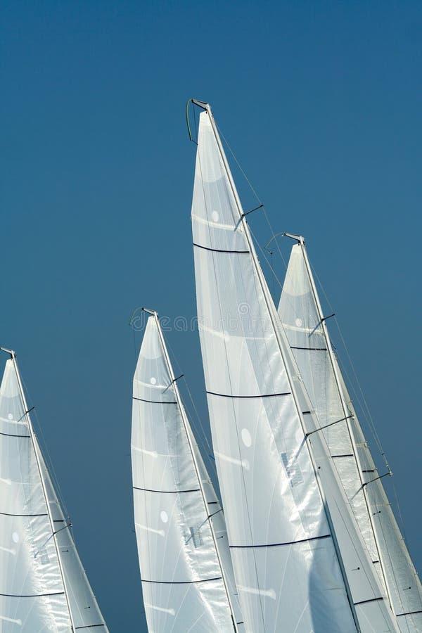 Segeln in guten Wind-/Segelhintergrund stockfotografie