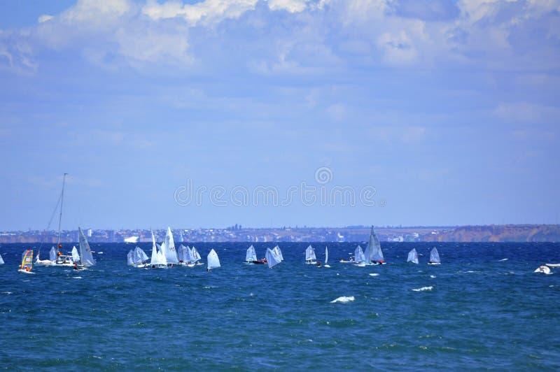 Segelsportwettbewerb lizenzfreies stockfoto