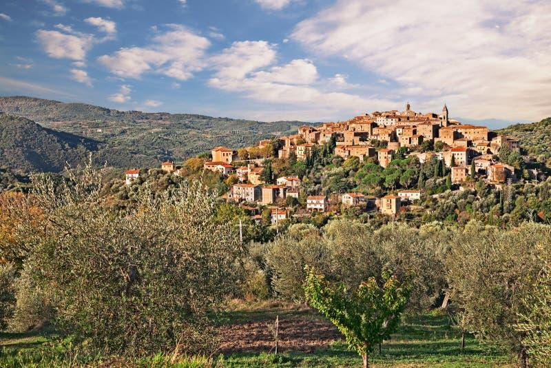 Seggiano, Гроссето, Тоскана, Италия: ландшафт стоковое изображение