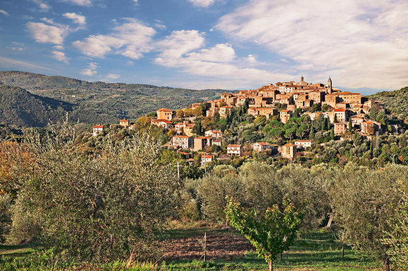 Seggiano, Grosseto, Tuscany, Italy: landscape. At sunrise of the ancient hill town on the slopes of Mount Amiata with olive grove in foreground stock image
