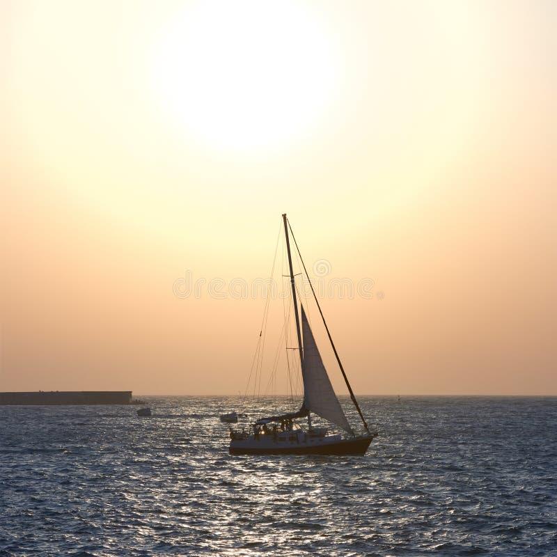 Segla fartyget mot havssolnedgång fotografering för bildbyråer
