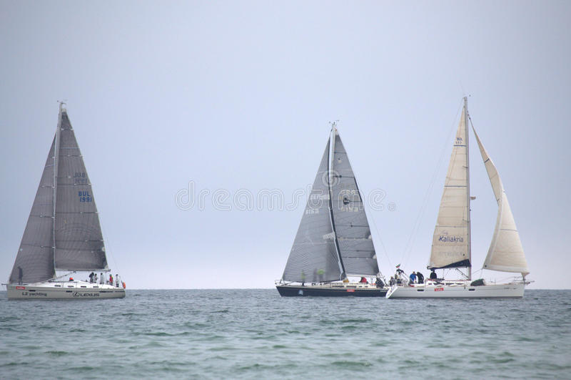 Segla yachtregatta arkivfoto