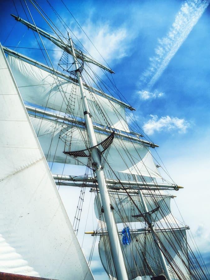 seglar, mast- och repsikten underifrån av ett klassiskt seglingskepp fotografering för bildbyråer