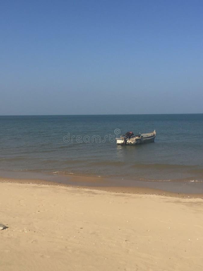 seglar och fångar vinden royaltyfri foto