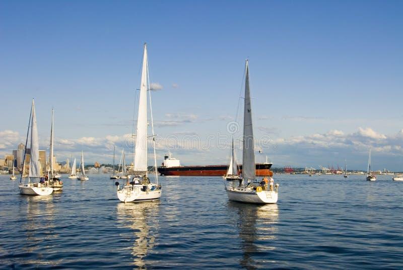 segling seattle arkivbilder
