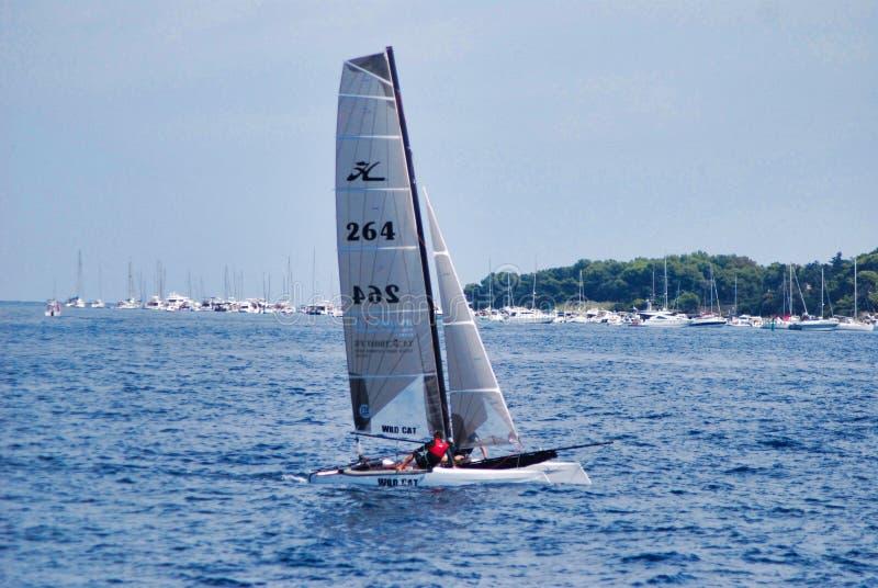 seglingen segelbåten, fartyget, jollesegling, seglar, medlet, att springa för segelbåt arkivfoto