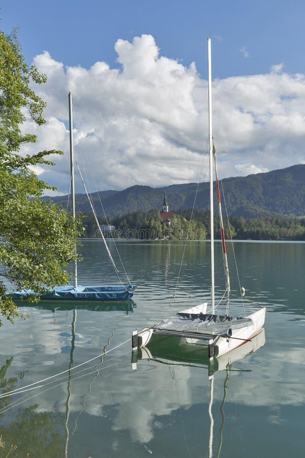 Seglingkatamaran som förtöjdes på sjön, blödde, Slovenien royaltyfria bilder
